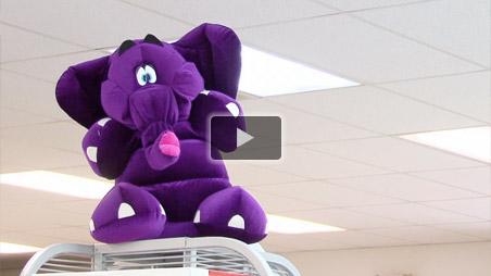 Purple Elephant Computer Factory